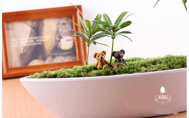 Gấu Teddy - Phụ Kiện Terrarium - 9X GARDEN