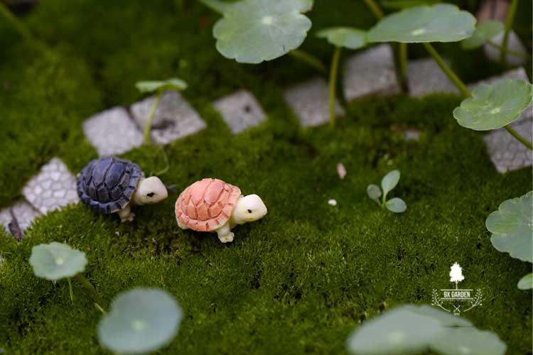Rùa Cỏ - Phụ Kiện Terrarium - 9X GARDEN