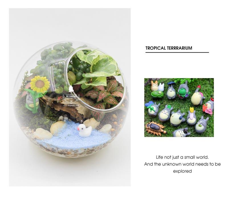 Tiểu Cảnh Để Bàn - Terrarium - Tropical Forest - 9X GARDEN