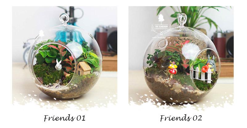 Tiểu Cảnh Để Bàn Terrarium Friends - 9X GARDEN