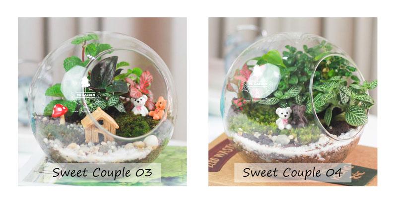 Tiểu Cảnh Để Bàn Terrarium Sweet Couple - 9X GARDEN