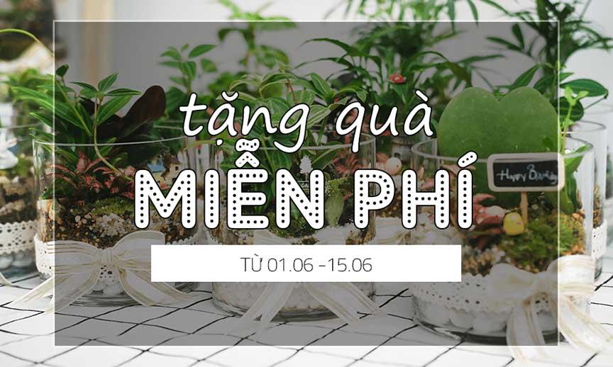 qua-tang-mien-phi-9xgarden