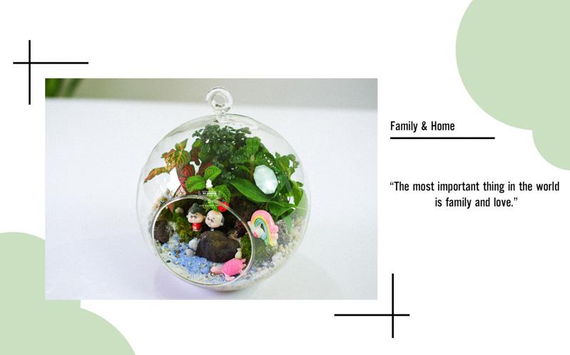 Tiểu Cảnh Để Bàn Terrarium - Family & Home 002 - 9X GARDEN