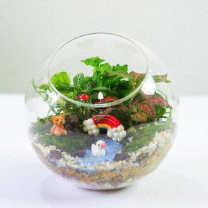 Tiểu Cảnh Để Bàn Terrarium - Sweet Couple 002 - 9X GARDEN