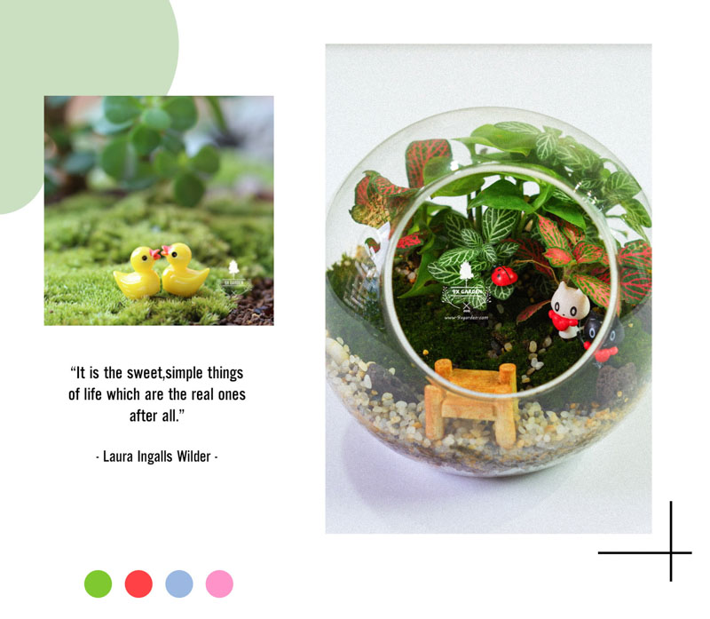 Tiểu Cảnh Để Bàn Terrarium - Sweet Couple 003 - 9X GARDEN