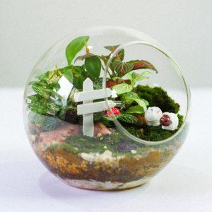 Tiểu Cảnh Để Bàn Terrarium - Sweet Couple 004 - 9X GARDEN