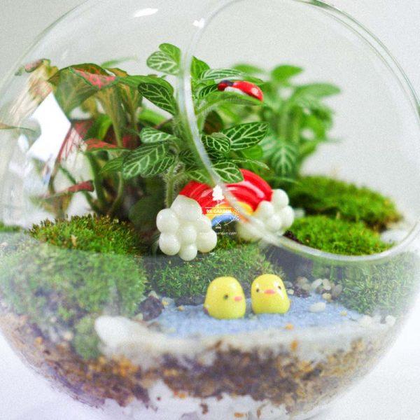 Tiểu Cảnh Để Bàn Terrarium - Sweet Couple 005 - 9X GARDEN